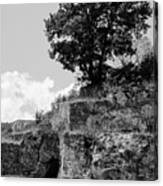 Countryside Of Italy Bnw 2 Canvas Print