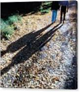 Couple Walking In The Fall Canvas Print