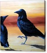Courting Crows Canvas Print