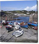 Coverack Harbour Cornwall Canvas Print