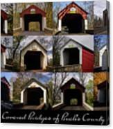 Covered Bridges Of Bucks County Canvas Print