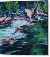 Covington Falls Canvas Print