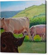 Cow And Calf Painting Canvas Print