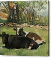 Cow Buddies Canvas Print