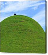 Cow Eating On Round Top Hill Canvas Print