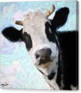 Cow Head Canvas Print