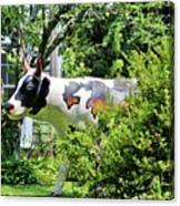 Cow Statue Canvas Print