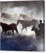 Cowboy Rounding Up Four Horses Canvas Print