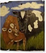 Cow's Canvas Print