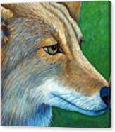 Coyote Logic Canvas Print