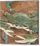 Crab Season Canvas Print