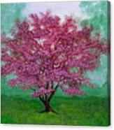 Crabapple Canvas Print