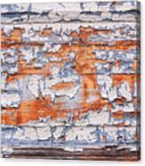 Cracked Wood Paint Canvas Print