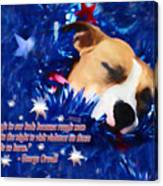 Cradled By A Blanket Of Stars And Stripes - Quote Canvas Print