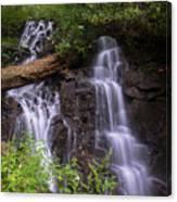 Cranberry Falls. Canvas Print