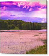 Cranberry Glade Lake Canvas Print