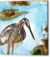 Crane In Florida Swamp Canvas Print