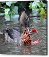 Crayfish Lunch Canvas Print