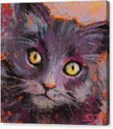 Crazy Cat Black Kitty Canvas Print
