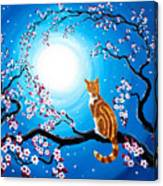 Creamsicle Kitten In Blue Moonlight Canvas Print