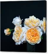 Creamy English Roses Canvas Print