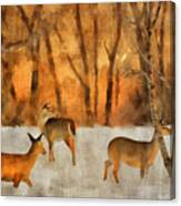 Creatures Of A Winter Sunset Canvas Print