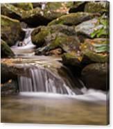 Creek 1 Canvas Print
