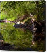 Creek 2 Canvas Print