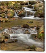 Creek 7 Canvas Print