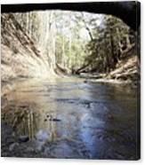 Creek At The Ridge Canvas Print