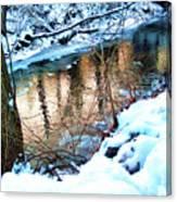 Creek In Bath Ohio Canvas Print