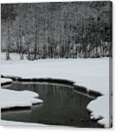Creek In Snowy Landscape Canvas Print