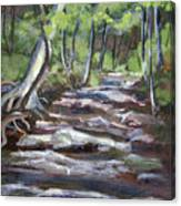 Creek In The Park Canvas Print