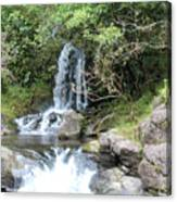 Creek On Kalalaua Trail Canvas Print