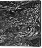 Creek Ripples B And W Canvas Print