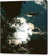 Creek Soul Canvas Print