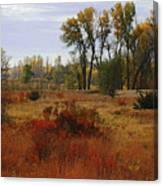 Creek Valley Beauty Canvas Print