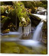Creek With Icicles Canvas Print