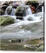 Creek With Rocks Spring Scene Canvas Print