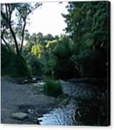 Creekbed Canvas Print