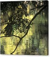 Creekside Color 2 Canvas Print
