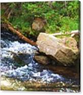Creekside Canvas Print
