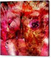 Creolite - Double Consciousness Canvas Print