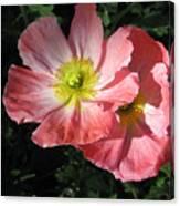 Crepe Paperflowers Canvas Print