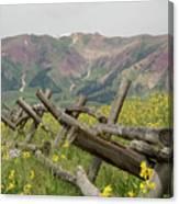 Crested Butte Color Canvas Print