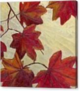 Crimson Branch Canvas Print