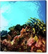 Crinoid Silhouette Canvas Print