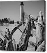 Crisp Point Lighthouse With Driftwood Canvas Print