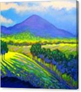 Croagh Patrick County Mayo Canvas Print