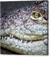 Crocodile Eye Canvas Print